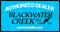 Authorized Dealer for Blackwater Creek Koi Farms