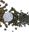 Blackwater Koi Food Pellet Sizes